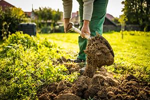 A man holding a shovel digging up land in a garden