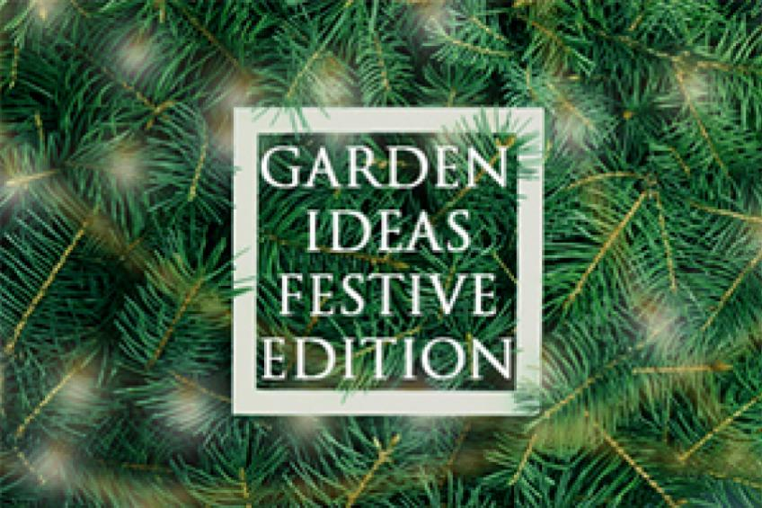 A picture of December Gardening Advice