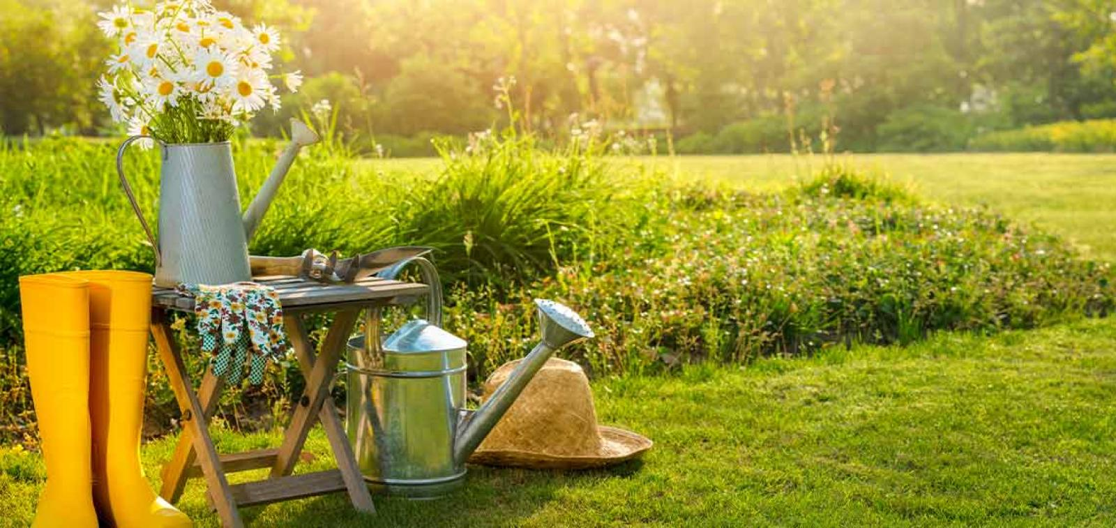 Gardening tools and equipment in a garden on a sunny day
