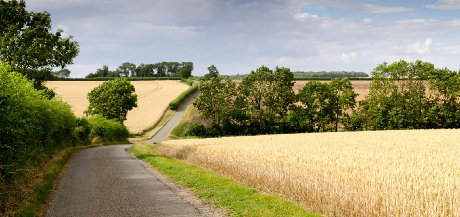 South Cambridgeshire countryside