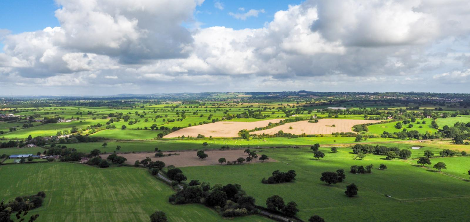 Countryside to represent the Willows in Kelsall